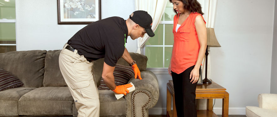 Waxahachie, TX carpet upholstery cleaning